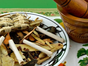 Closeup of Chinese herbs and mixer